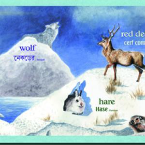 Arktiska djur